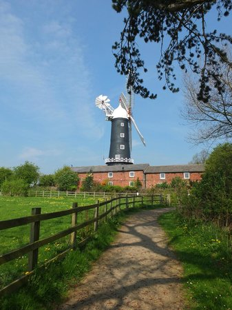 Skidby Windmill : View from the car park path