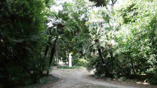 National Gardens: Walkways under the trees