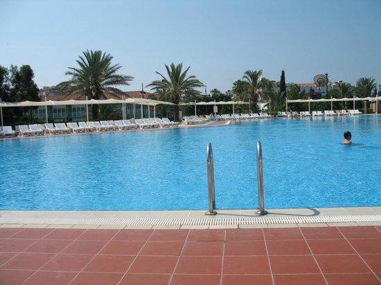 Euphoria Palm Beach Resort : Pool