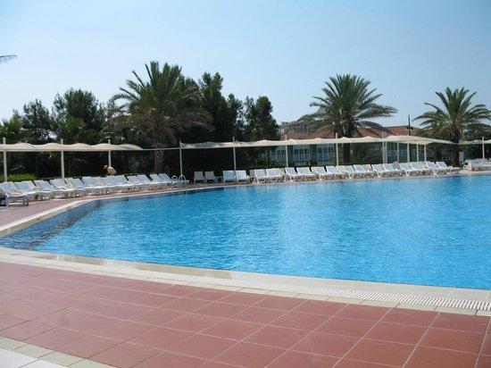 Euphoria Palm Beach Resort: Pool