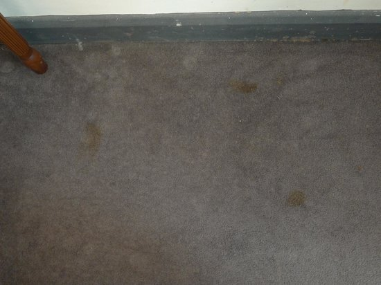 The Beeches Hotel: stains on carpet