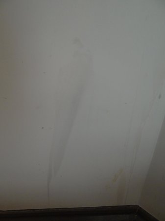 The Beeches Hotel: marks on wall
