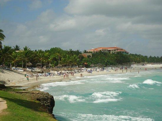 Sol Palmeras: vista playa