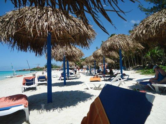 Sol Palmeras: servicio de playa