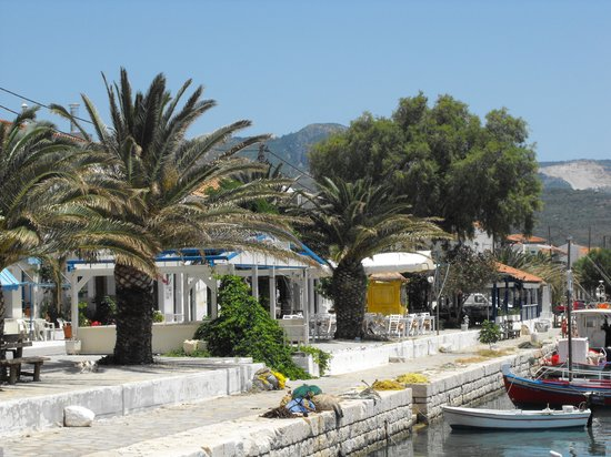Kerkis Bay Tavern: TRANQUIL SETTING FOR LUNCH AT KERKIS BAY RESTURANT
