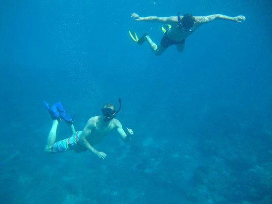 Cozumel Boat Trips : Awesome snorkeling off the boat