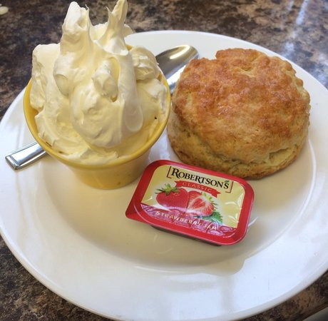 The Cafe: Home made scones with jam and cream