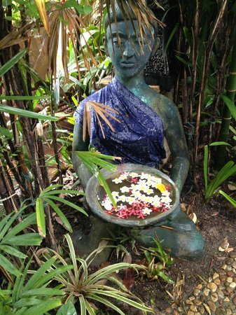 The Baray Villa : Walking around the grounds