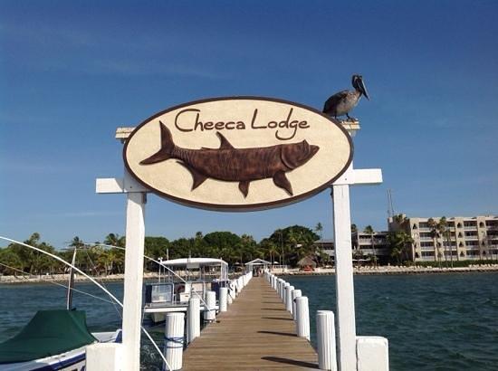 Cheeca Lodge & Spa: nice pix