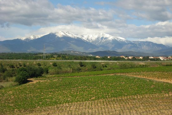 Vin en Vacances - Food & Wine Tours: The Corbieres area