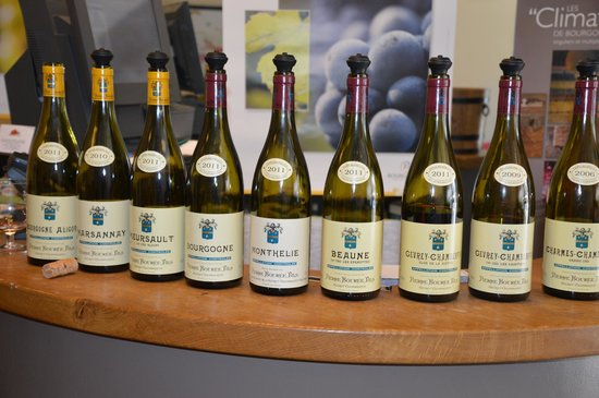 Aux Quatre Saisons Wine Tours : The wines we tasted at our wine tasting lunch.