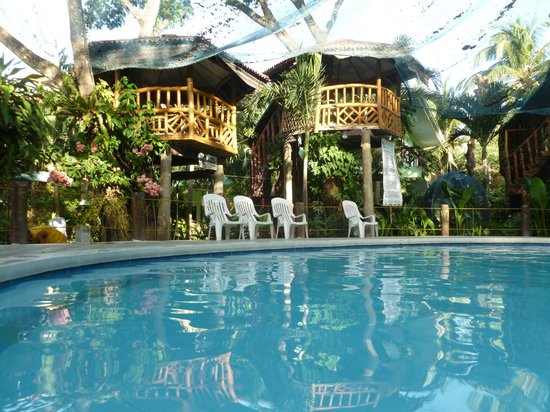 Looking at the tree houses from the pool picture of sea - Hotels in dumaguete with swimming pool ...