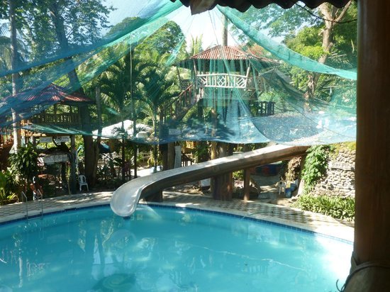 A view of the pool from a tree house picture of sea - Hotels in dumaguete with swimming pool ...