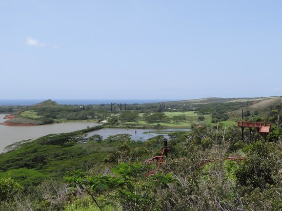 Koloa Zipline: The view from the final platform