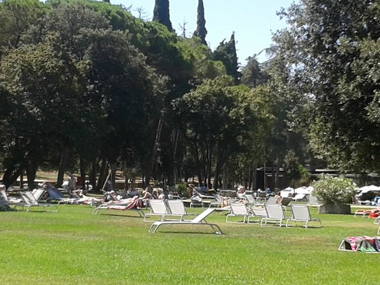 Hotel Eden : The Hotel Lawn