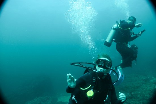 Scuba Diving Adventures : Happy times