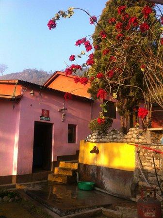 Himalayan Yoga Academy and Retreat: beauty