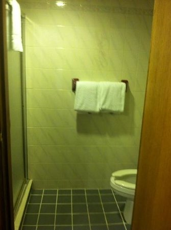 Garland Lodge & Resort: shower/bathroom in king room, main lodge...no exhaust fan