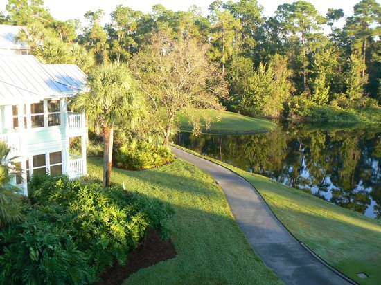 Disney's Old Key West Resort: View from room block 64