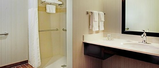 Hilton Garden Inn Portland Airport : Bathroom