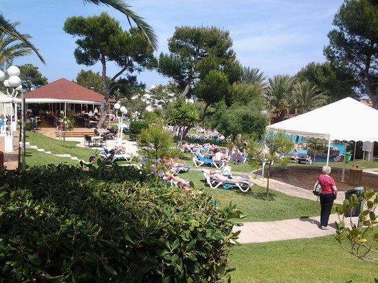 Grupotel Gran Vista & Spa: Garden view.