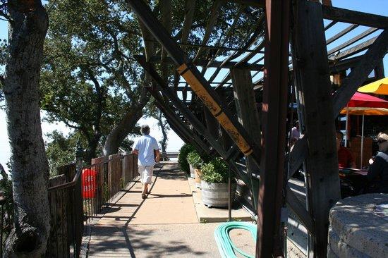 Nepenthe : Le bord de la terrasse