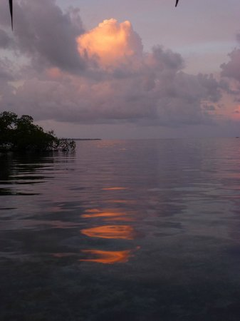 Coral Cay Cabins : Sunset
