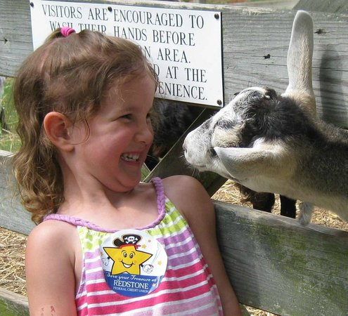 Burritt on the Mountain : Get up close and personal with our Barnyard Buddies!