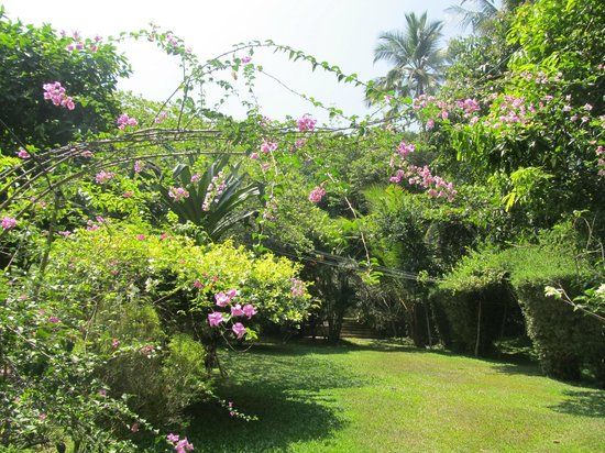 Sri Gemunu Beach Resort: Garden in challe