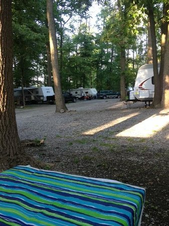 Yogi Bear's Jellystone Park Camp-Resort in Quarryville: Camp site