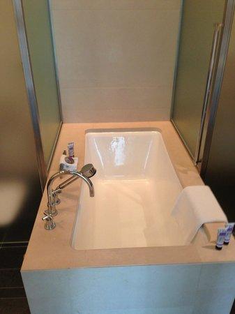 Four Seasons Hotel Tokyo at Marunouchi : Bath