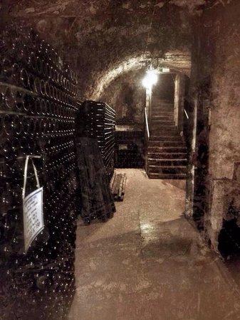 Domaine Champagne Ployez-Jacquemart : Cellar