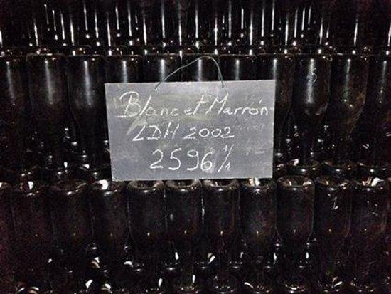 Domaine Champagne Ployez-Jacquemart: Cellar