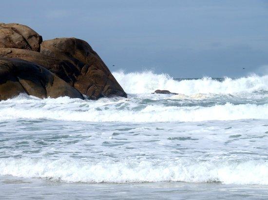 Joaquina beach: Perigo à vista.