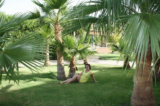 Desert Rose Resort : наслождаюсь отдыхом