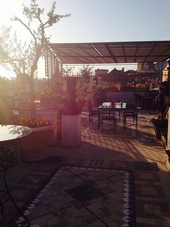 Made in Rome Bed&Breakfast : Amazing Terrace