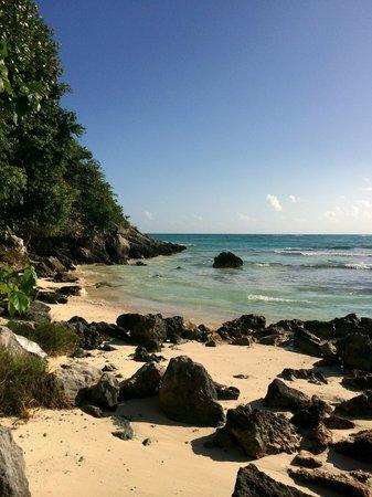 Hotel La Joya beach area