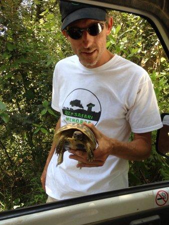 Jeep Safari Menorca : Wildlife on our expedition.