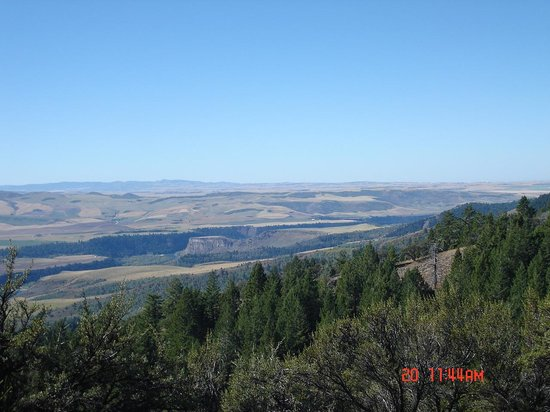 McGarry Ranches: mountain view