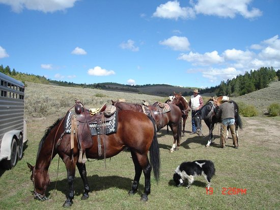 McGarry Ranches: lunch break