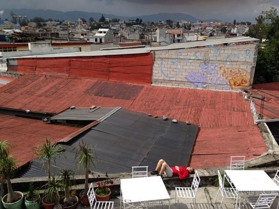 Casa Argentina: cat on a roof