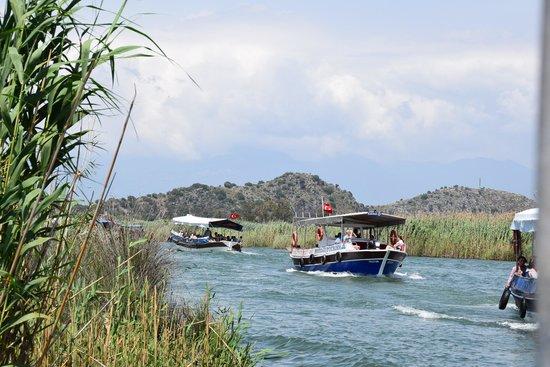Club Tuana Fethiye: River trip via Dalyan