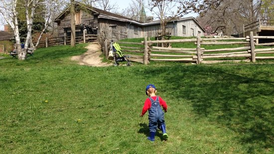 Riverdale Farm: Some of the land is a bit steep but our toddler enjoyed it.
