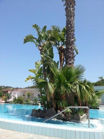 Hotel San Francesco: piscina esterna