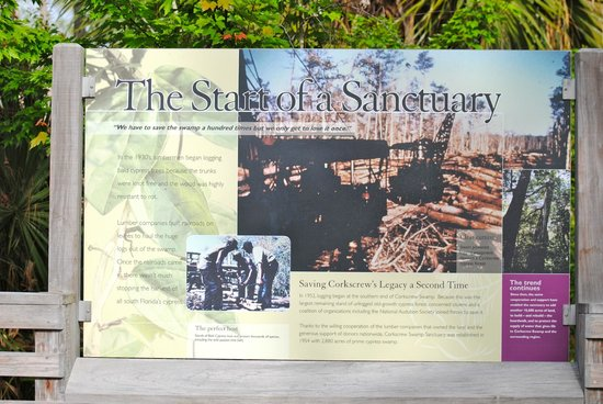 Corkscrew Swamp Sanctuary: History of Sanctuary