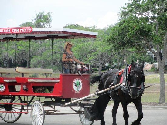 Sea Island Carriage Company: RED Carriage