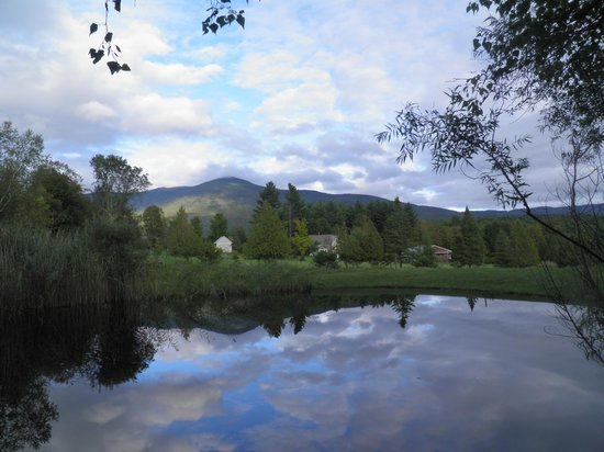 Firefly Bed and Breakfast: View of Mt Abe from our swimming pond by Ross Bachelder