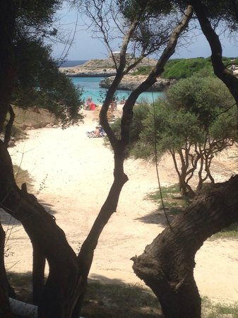 Vacances Menorca Resort: Beach just a few footsteps from our room