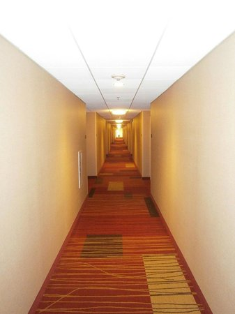 Courtyard by Marriott Lincroft Red Bank: Hallway
