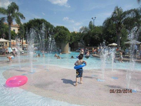 Sheraton Vistana Resort Villas- Lake Buena Vista : Cascades Pool